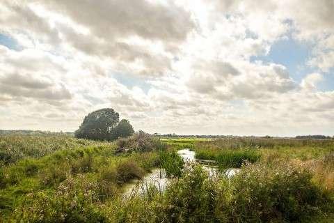 Suffolk Wildlife Trust rural scene